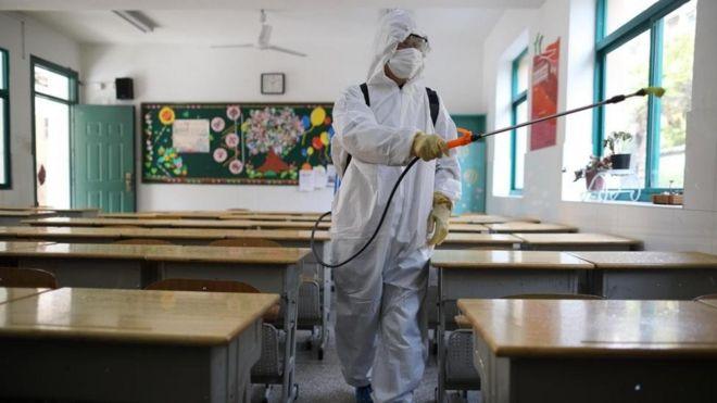 Во многих странах, пытаясь сдержать распространение вируса, закрыли школы