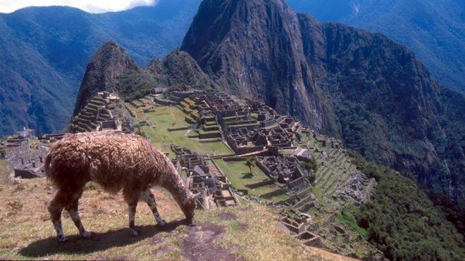 Tourist dies in Machu Picchu taking photo - BBC News