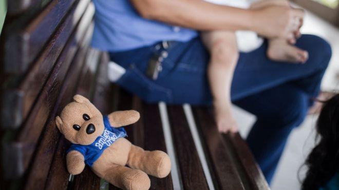 Ursinho em abrigo em Fortaleza