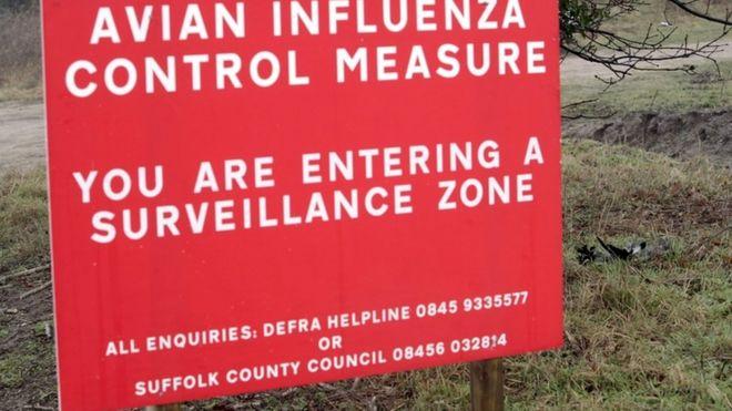 2007年禽流感时英国乡村的警告牌