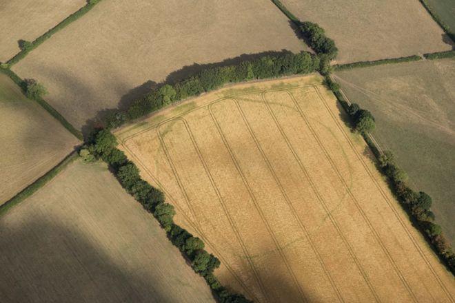 Uma área cercada antiga em Churchstanton, também em Somerset
