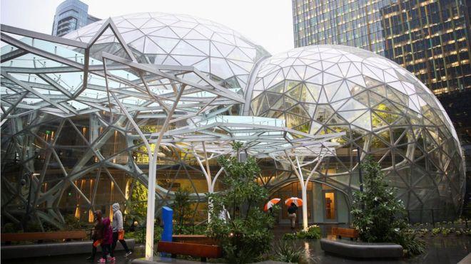 Por qué Amazon construyó una selva tropical para sus empleados
