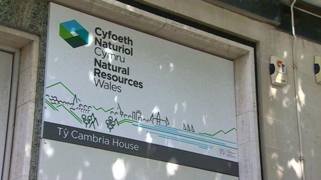 Природные ресурсы Уэльс знак