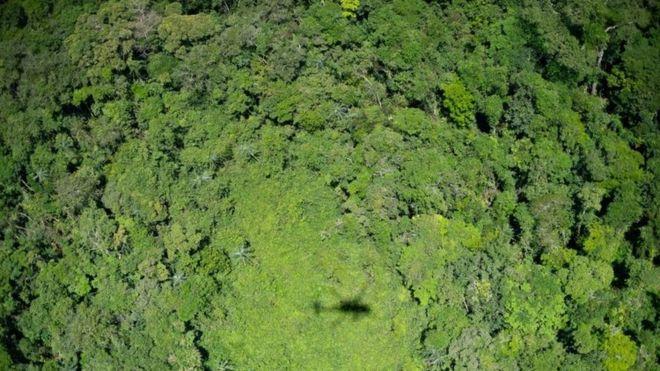 Sombra de helicóptero sobre a Amazônia