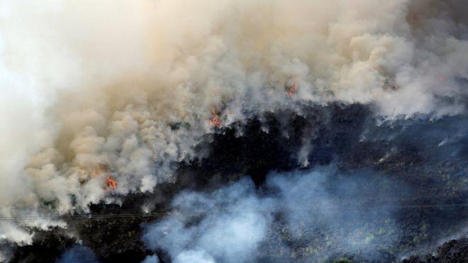 Пожар на Зимнем холме