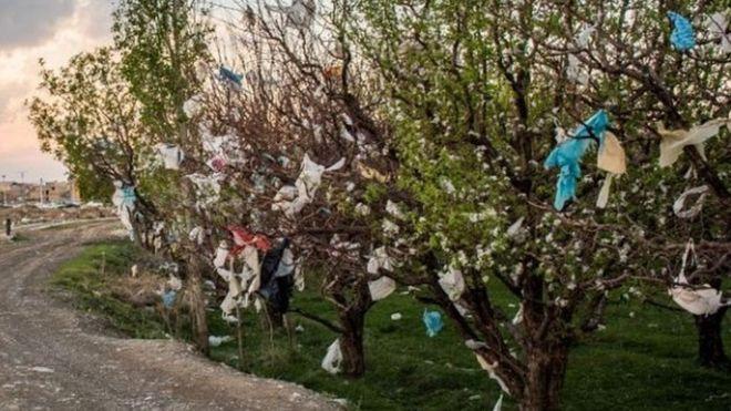 غلبه بر آلودگی پلاستیکی؛ آیا ایران برنامهای دارد؟