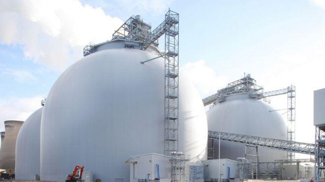 Купола из биомассы