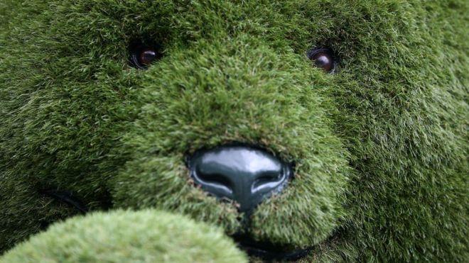 an artificial grass teddy bear