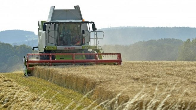 Post-Brexit farming funding set out by Michael Gove - BBC News
