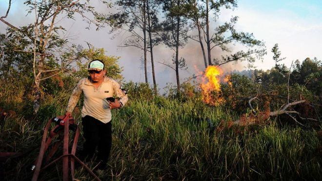 Kebakaran Hutan Lahan Di Aceh Membesar Kabut Asap Ganggu Pernafasan