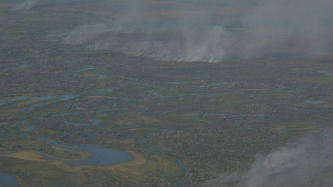 Fogo toma conta de área verde do Pantanal