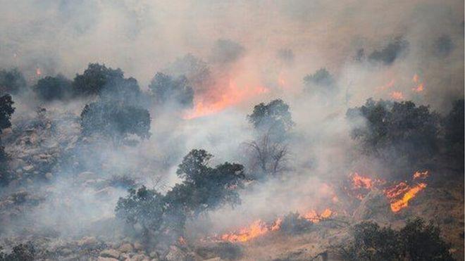 حریقهای پراکنده مراتع و جنگلهای ایران را میسوزاند