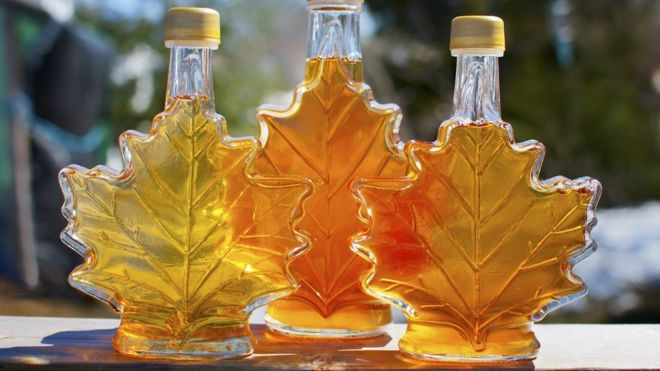 Image result for cANADIAN MAPLE SYRUP