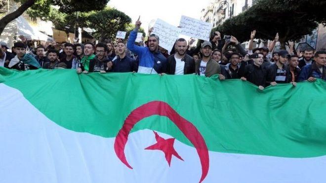 متظاهرون يحملون علم الجزائر