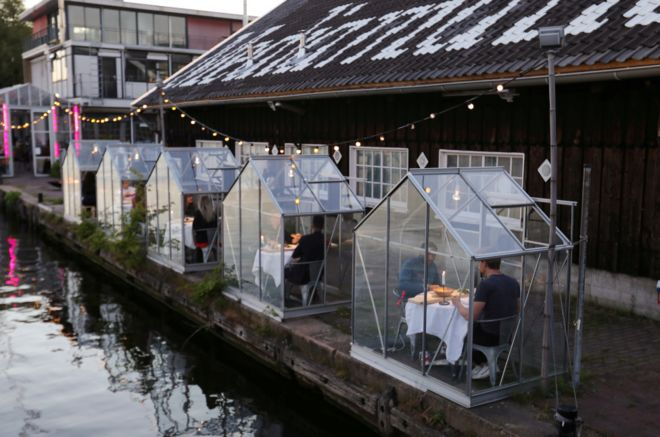 """""""Quarantine greenhouses"""" in which guests can dine in Amsterdam"""