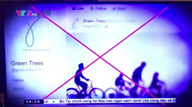 Ảnh chụp màn hình lại một video thành viên Greentrees quay lại phóng sự của VTV hôm 3/11