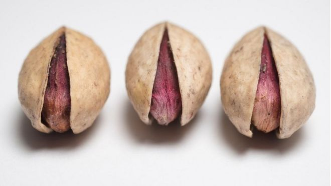 Karta Syd Norge.The Pistachios That Need Police Protection Bbc News