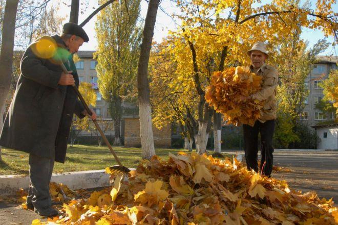 реферат на тему опале листя користь чи шкода 5 клас