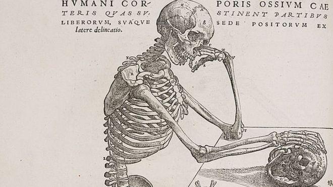 Grabado de Andreas Versalius de un esqueleto