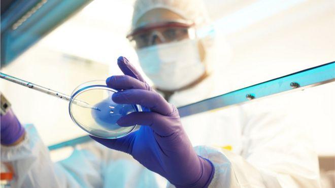 Cientista fazendo pesquisa em laboratório