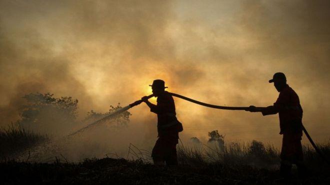 Пожарные на Суматре в августе 2019 года