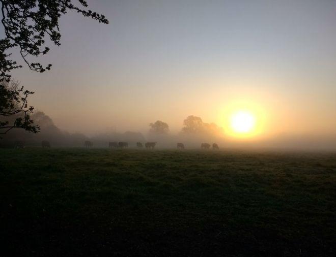 Sunrise across fields