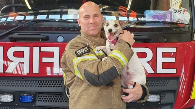 Millie the Jack Russell is now staying with leading firefighter Jamie Trew, who found her