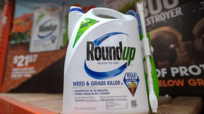 Roundup is a popular brand of weedkiller in the UK