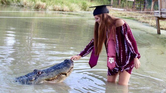 طالبة أمريكية تحتفل بتخرجها مع تمساح طوله 4 أمتار