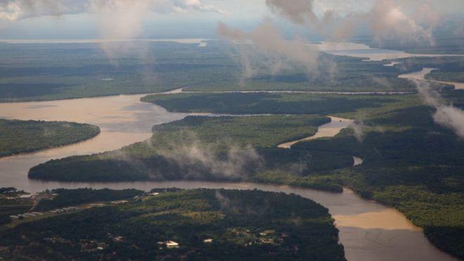 Floresta amazônica no Pará