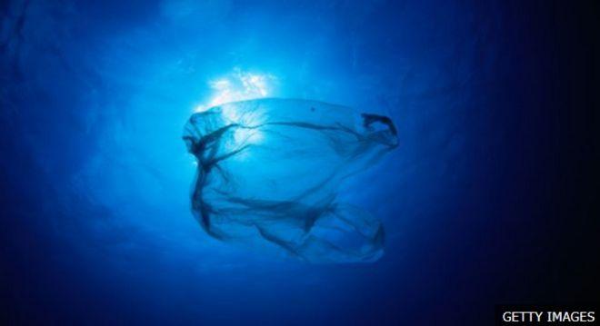 ขยะพลาสติกจำนวนมากถูกทิ้งลงสู่มหาสมุทร