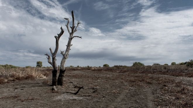 australia drought how much rain would end the big dry bbc news