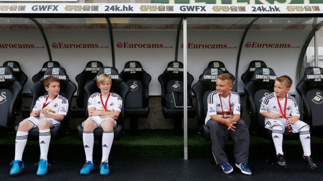3c77a5780 Swansea City charging mascots Premier League prices - BBC News