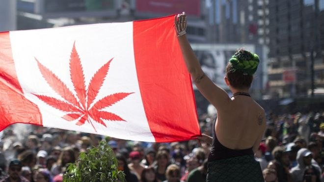 420 celebrations at Yonge Dundas square.