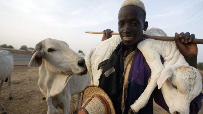 Herdsmen boy dey carry im sheep