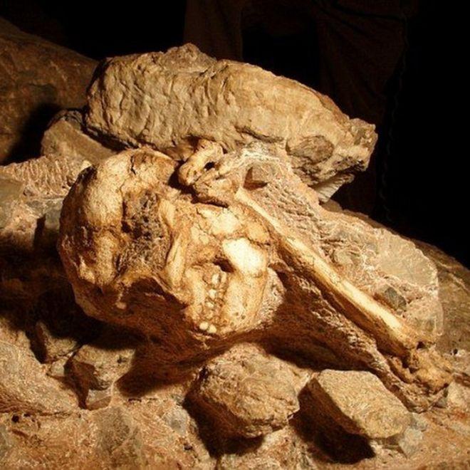 """Des scientifiques sud-africains ont passé 20 ans à creuser la pierre pour extraire """"Little Foot""""."""