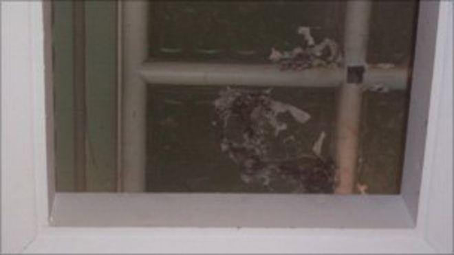 Ущерб в доме короля Эдварда за ложным потолком