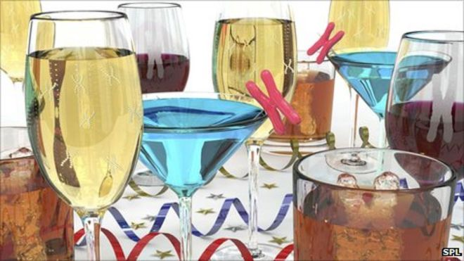 What damage does alcohol do to our bodies bbc news alcoholic drinks ccuart Images