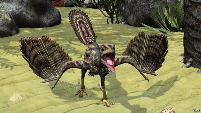 Archeopteryx artwork