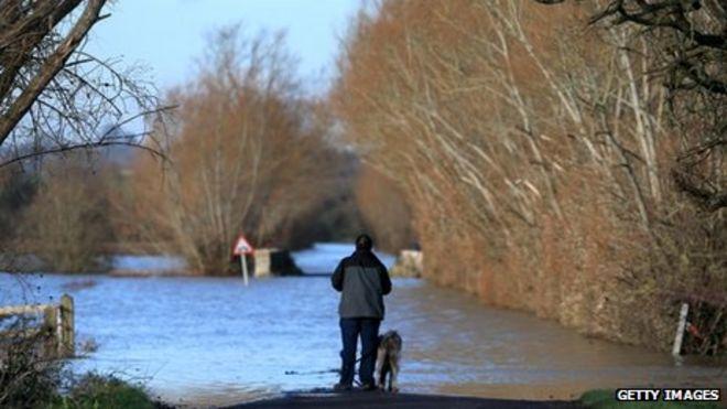 Мужчина и его собака стоят, глядя на паводковые воды на дороге