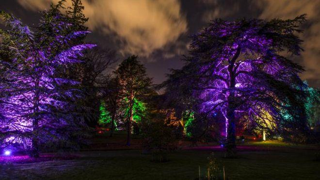 Show to light up Royal Botanic Garden in EdinburghBBC News