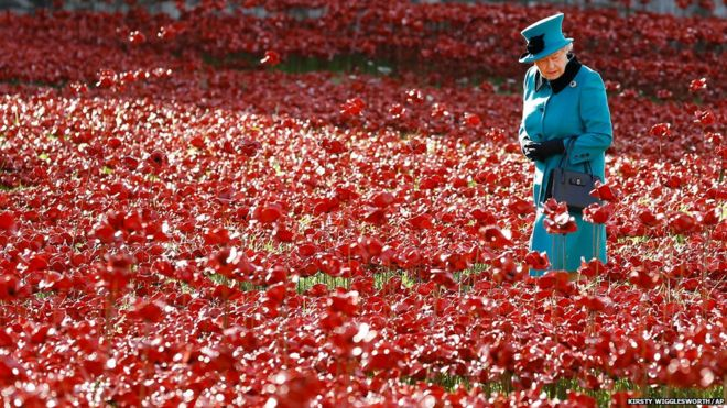 in pictures the poppies at the tower of london bbc news