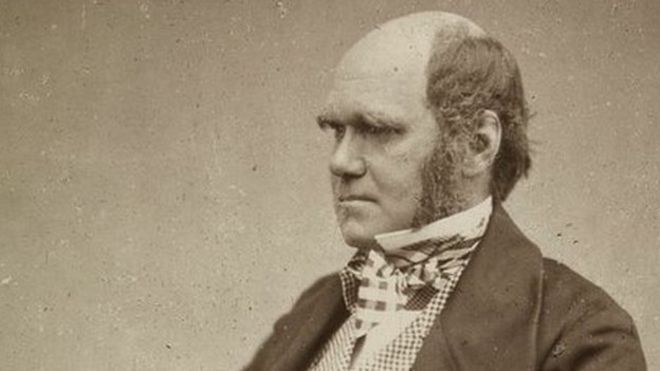 charles darwin s evolution notes released by cambridge university