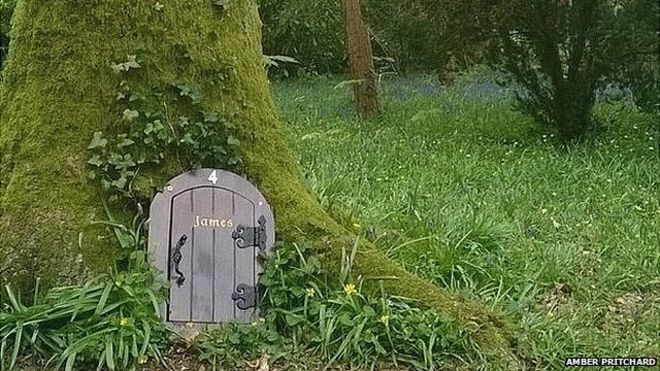 Wayford Woods Somerset & Fairy controlu0027 to halt tiny doors in Somerset woods - BBC News