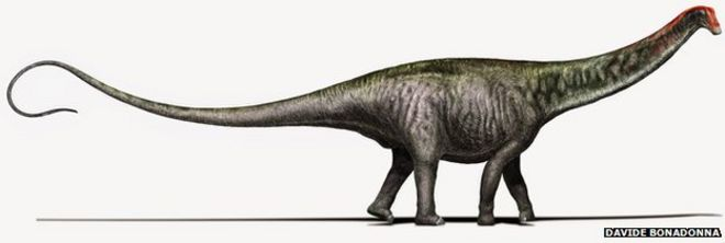 Brontosaurus Dino Name Is Revived Bbc News