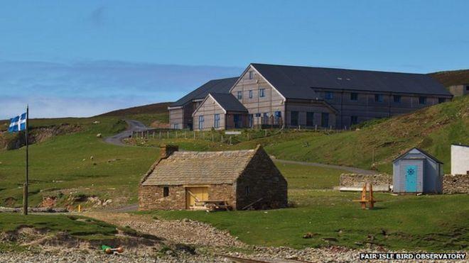 Bird migration changes on Fair Isle revealed - BBC News