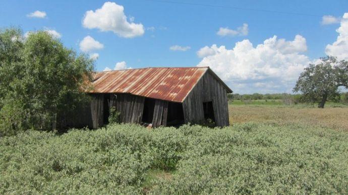 Construcción abandonada de aparceros en lo que era la plantación de los Weisiger y donde nació William Ellis.