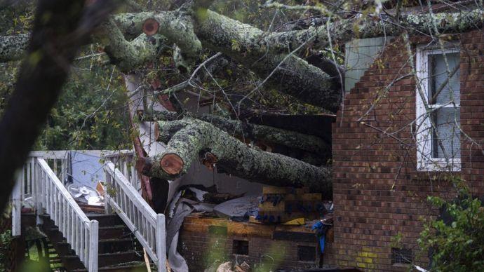 Un árbol sobre una vivienda en Wilmington, Carolina del Norte.