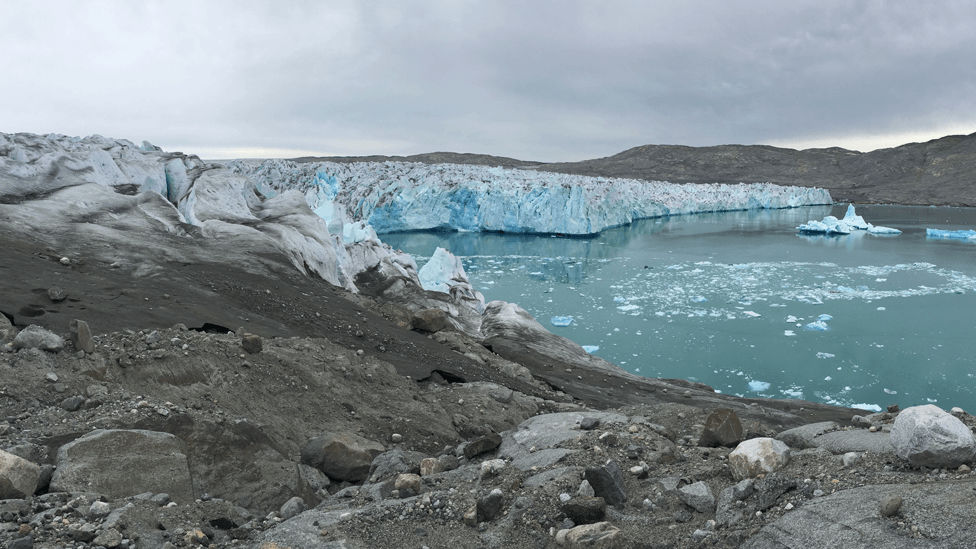 Водоросли на леднике Сермилик