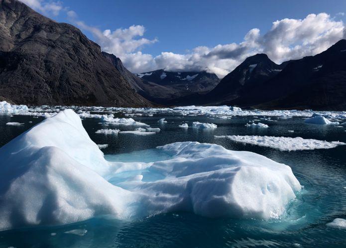 тающий лед